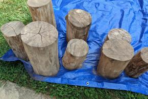 Finished stumps to be used as chairs in the outdoor garden classroom.